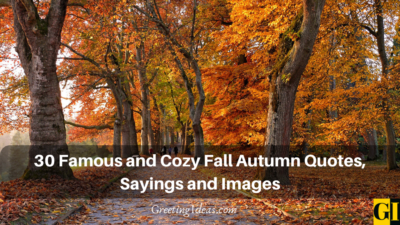 30 Famous and Cozy Fall Autumn Quotes, Sayings and Images