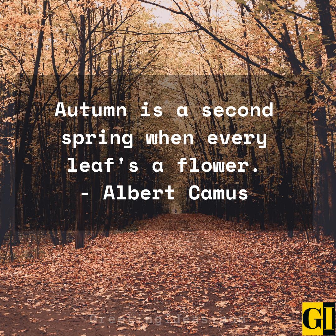 Autumn Quotes Greeting Ideas 3 1