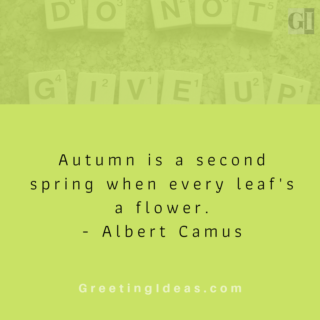 30 Beautiful Fall Autumn Quotes: Best & Funny Autumn Quotes and Sayings