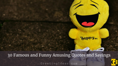 30 Famous and Funny Amusing Quotes and Sayings
