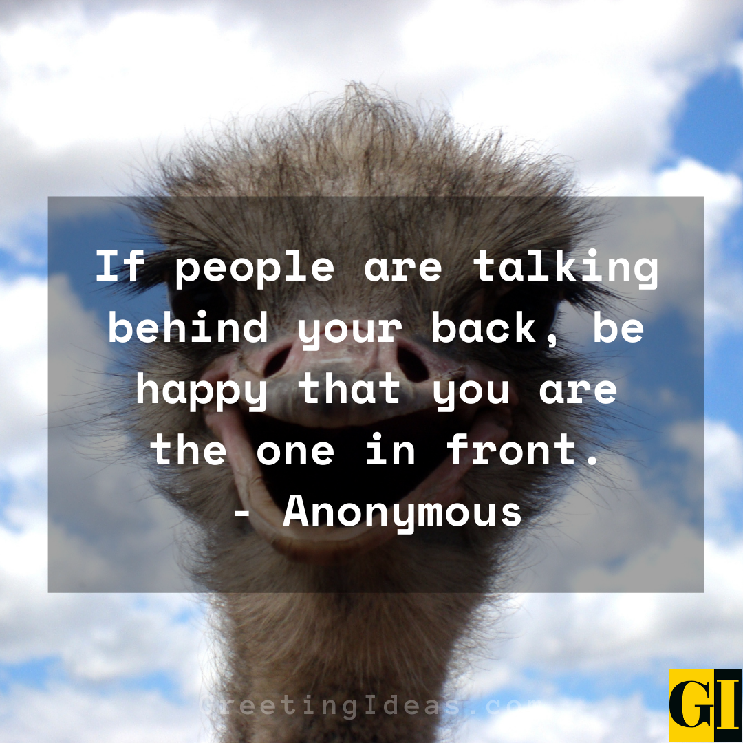 Amusing Quotes Greeting Ideas 3