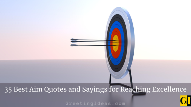 35 Best Aim Quotes and Sayings for Reaching Excellence