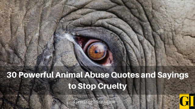 30 Powerful Animal Abuse Quotes and Sayings to Stop Cruelty