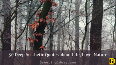 50 Deep Aesthetic Quotes about Life, Love, Nature