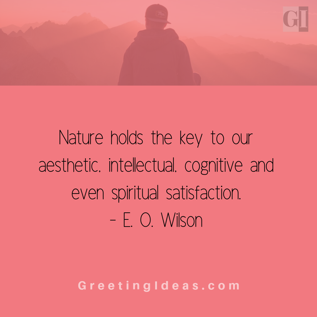 Aesthetic Quotes Greeting Ideas 8