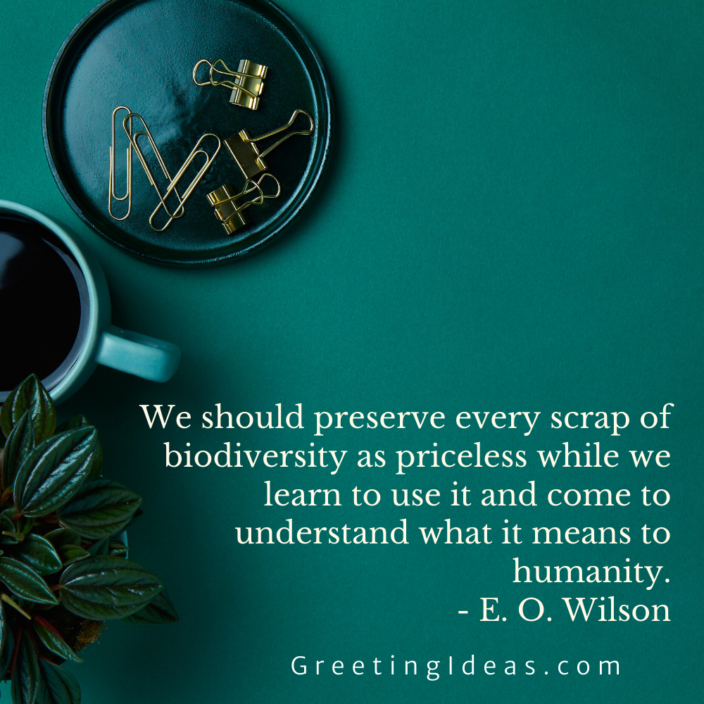 Biodiversity Quotes Greeting Ideas 1