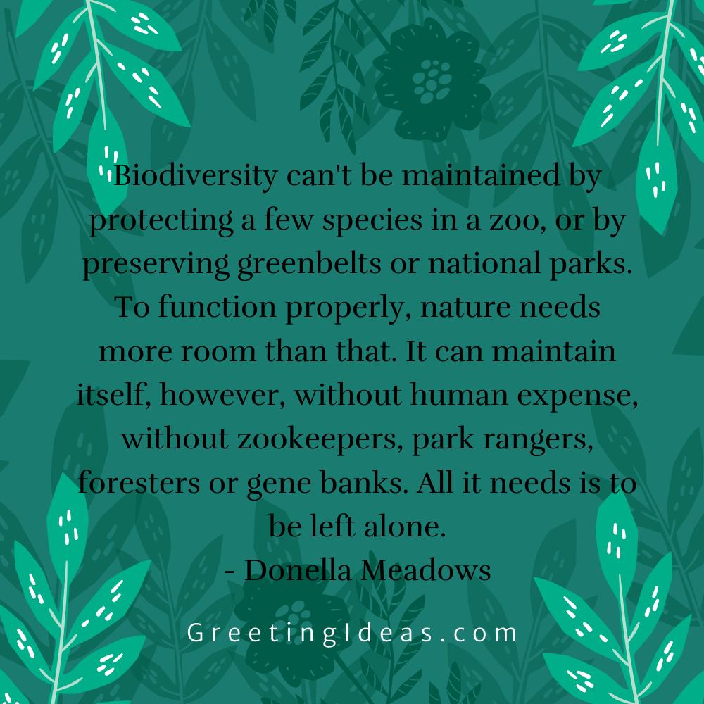 Biodiversity Quotes Greeting Ideas 13