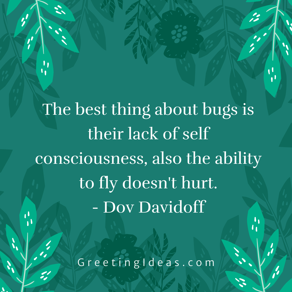 Bug Quotes Greeting Ideas 13