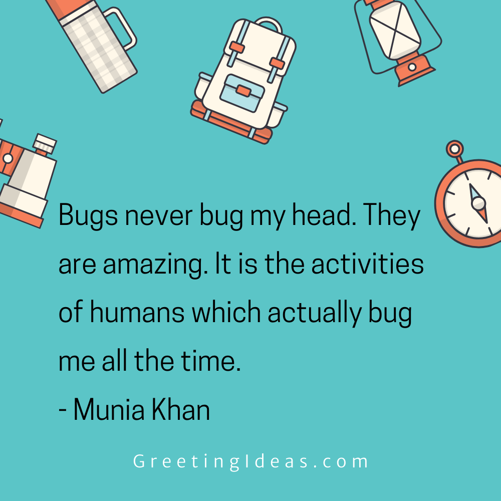 Bug Quotes Greeting Ideas 4