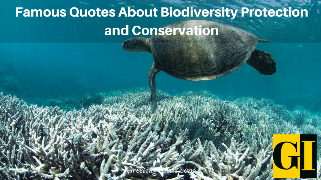 Famous Quotes About Biodiversity Protection and Conservation