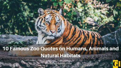 10 Famous Zoo Quotes on Humans, Animals and Natural Habitats