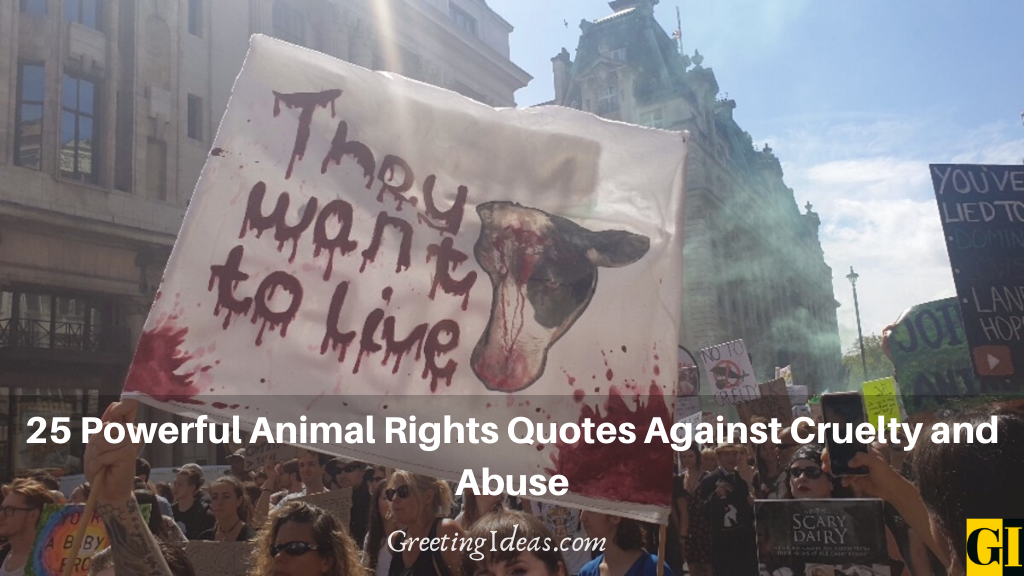 25 Powerful Animal Rights Quotes Against Cruelty and Abuse
