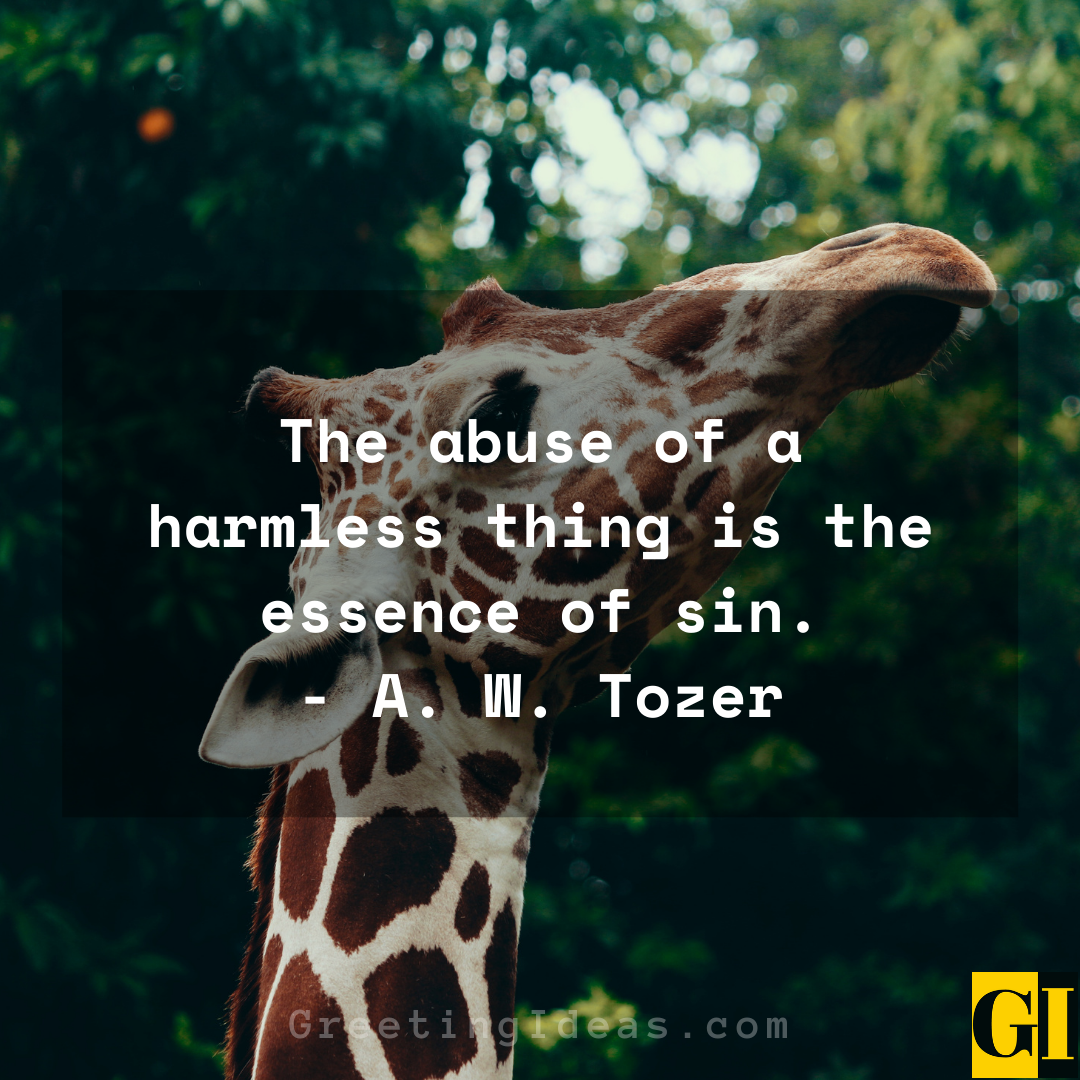 Animal Abuse Quotes Greeting Ideas 3