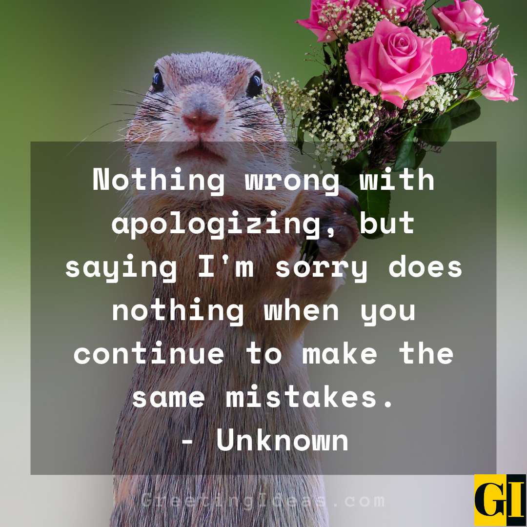 Apologizing Quotes Greeting Ideas 3