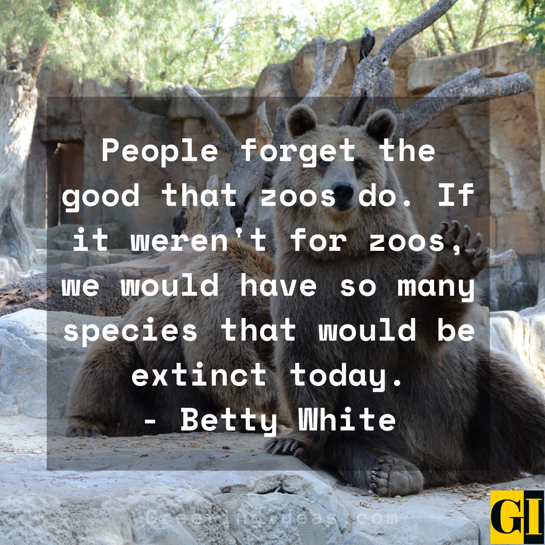 Zoo Quotes Greeting Ideas 1 1