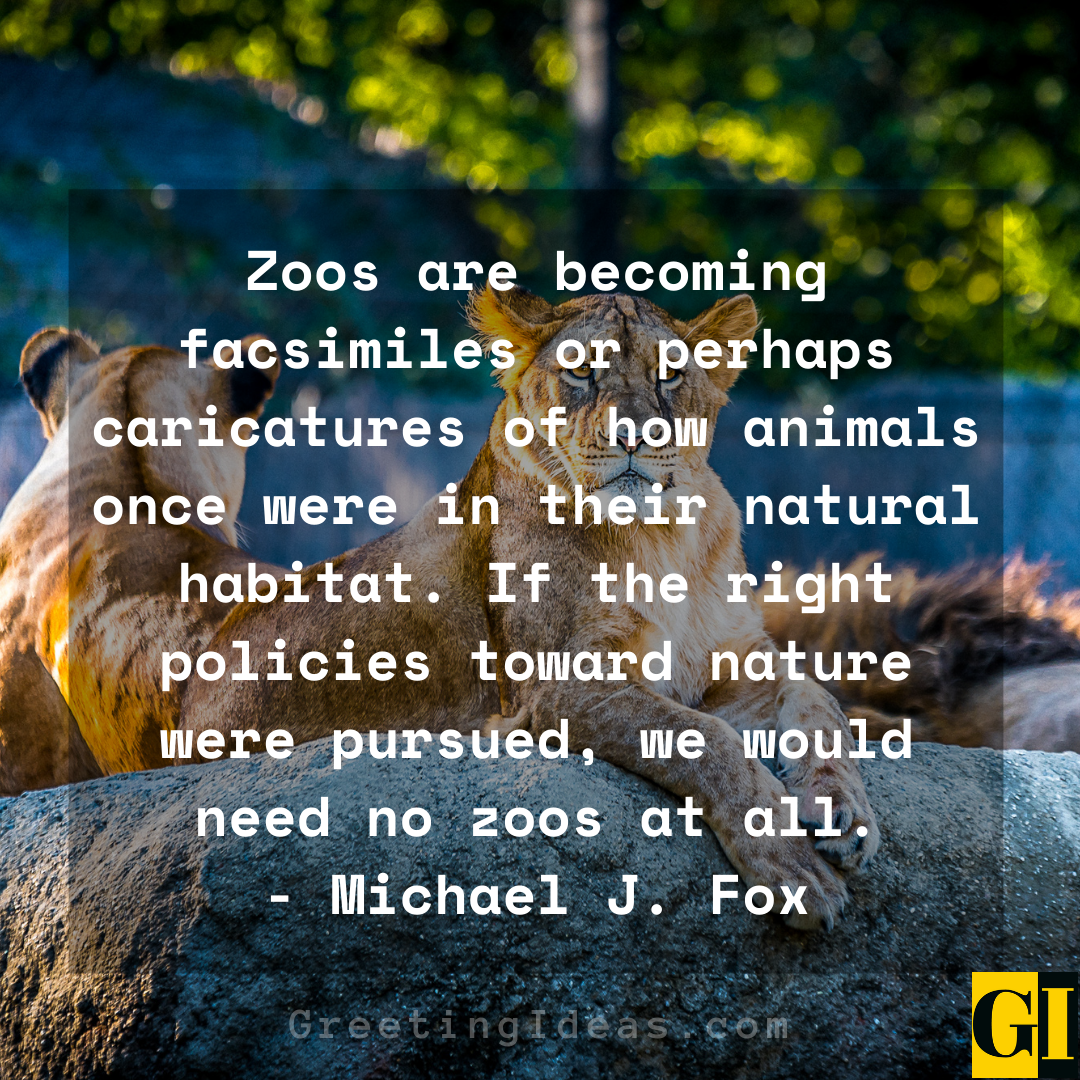 Zoo Quotes Greeting Ideas 2 1