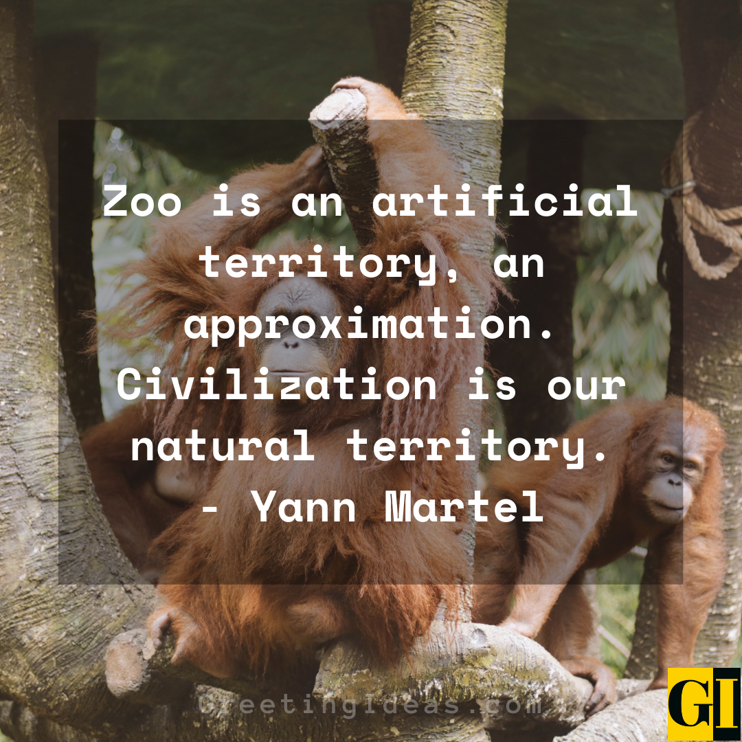 Zoo Quotes Greeting Ideas 3 1