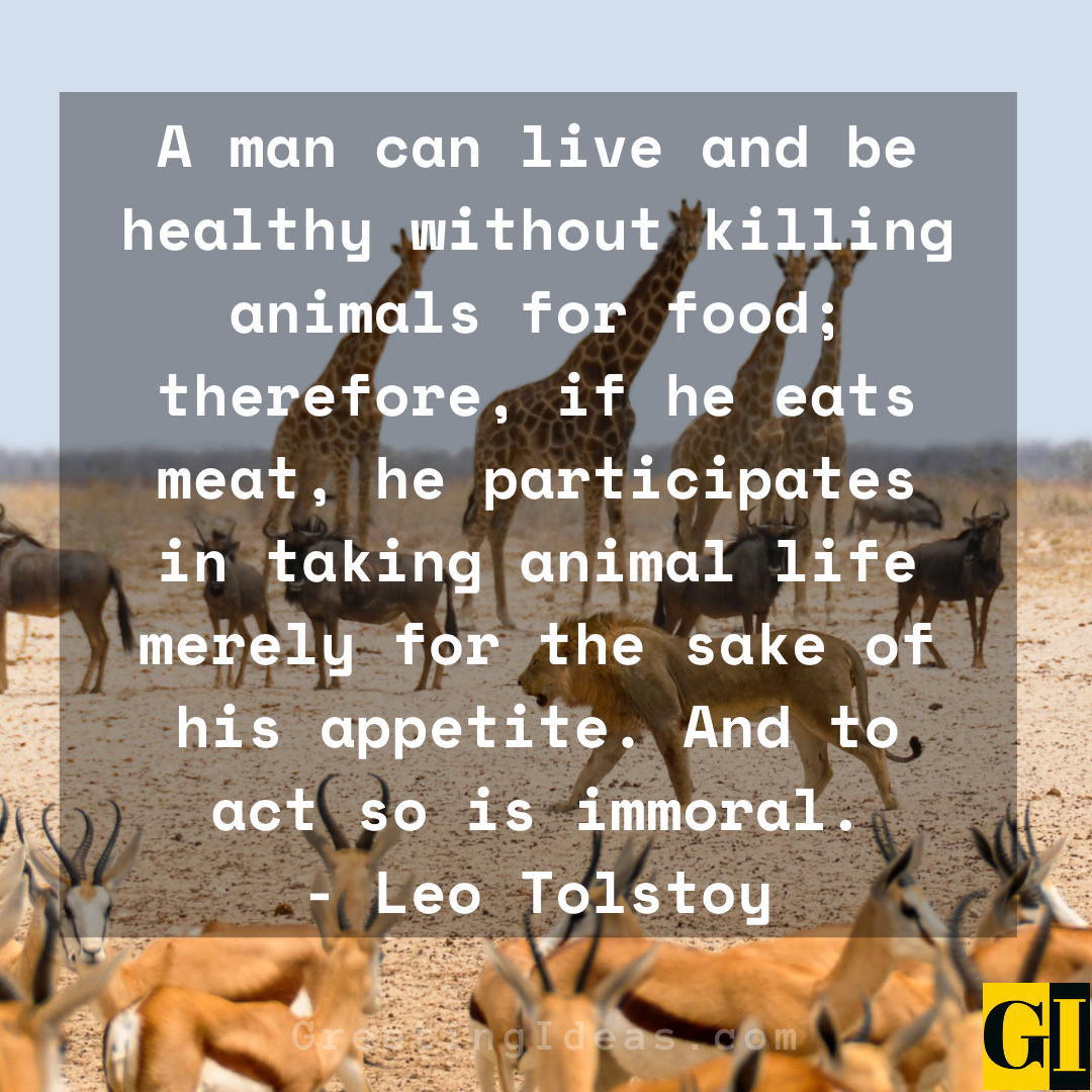 animal rights quotes greeting ideas 4