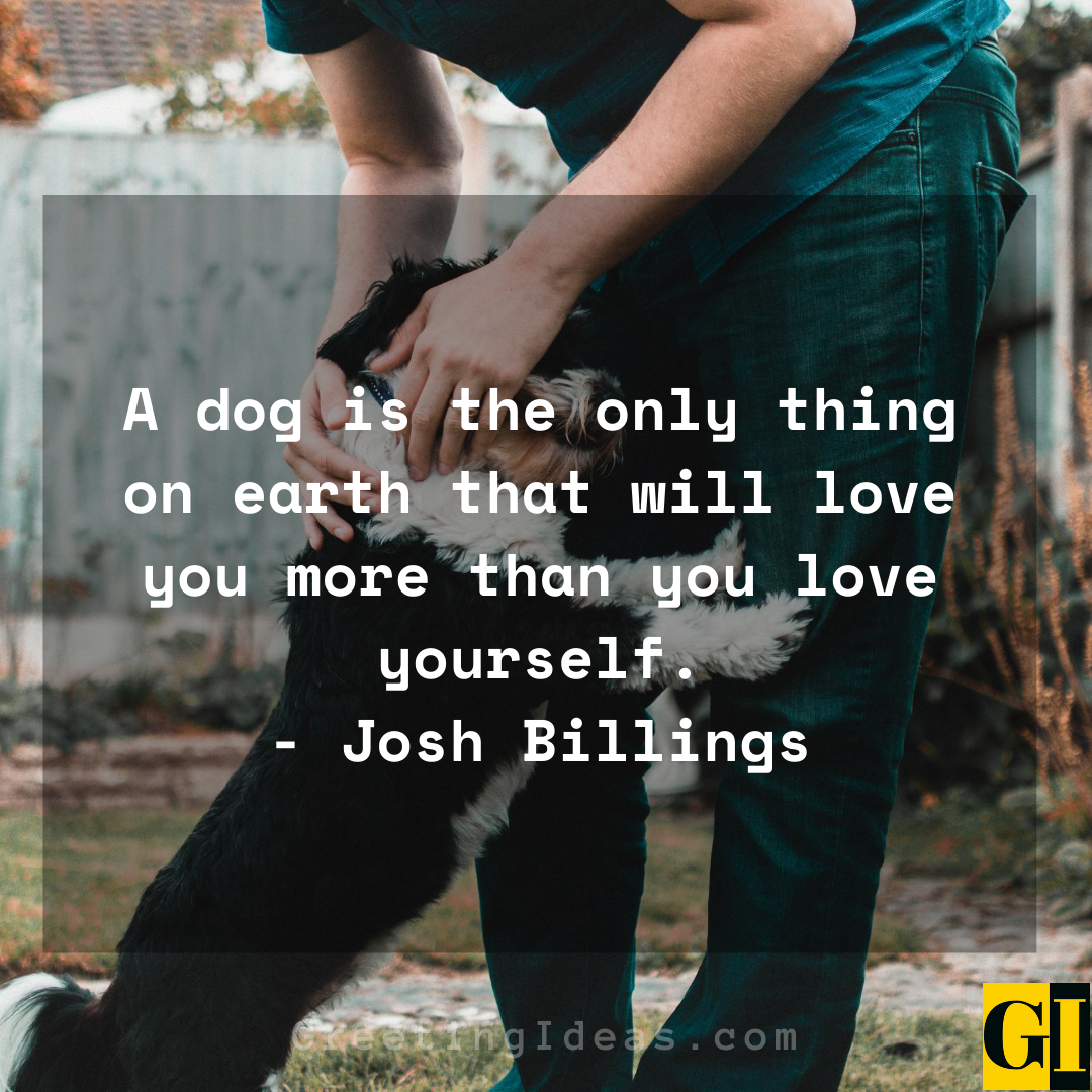15 Cute and Best Animal Lover Quotes and Sayings 2