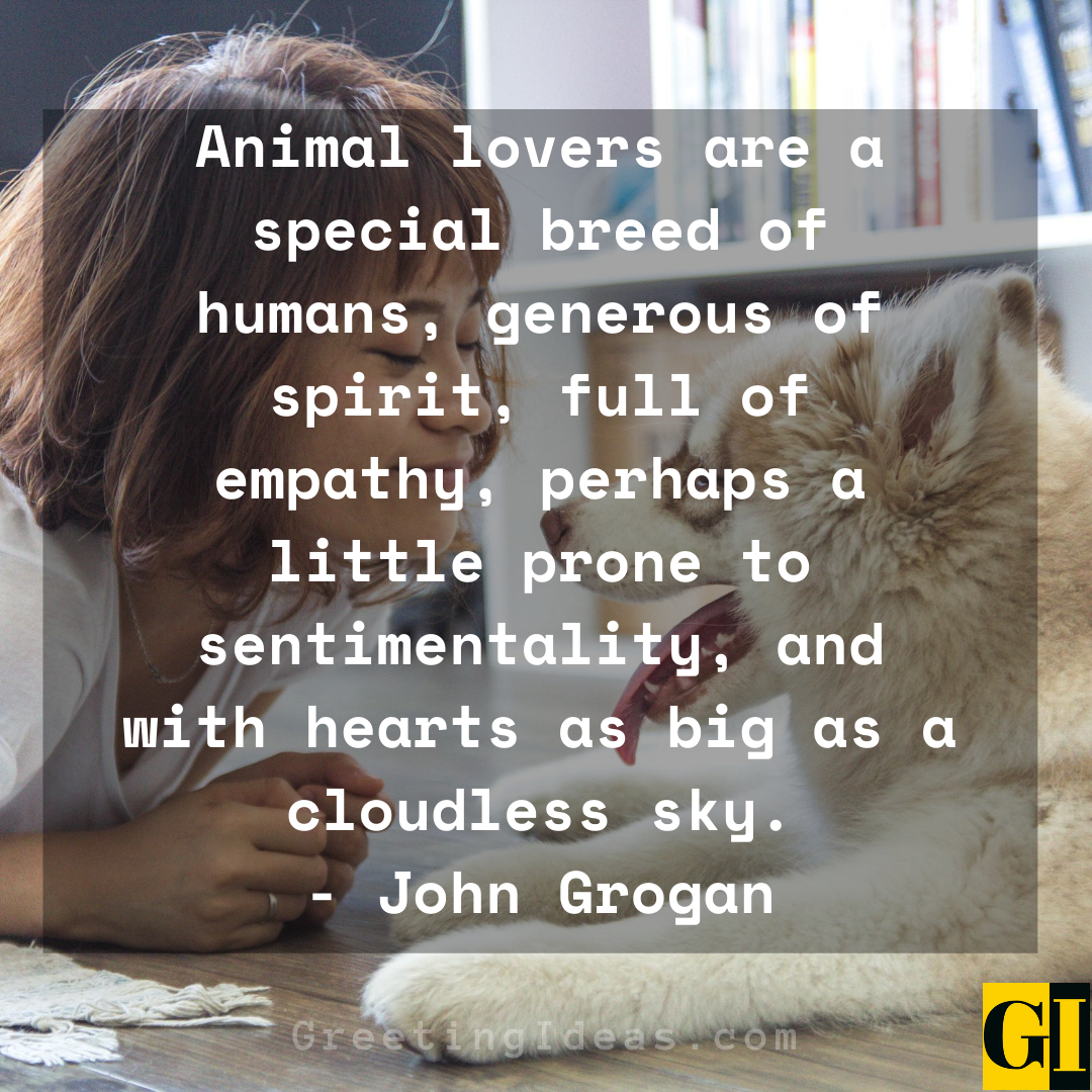 15 Cute and Best Animal Lover Quotes and Sayings 4