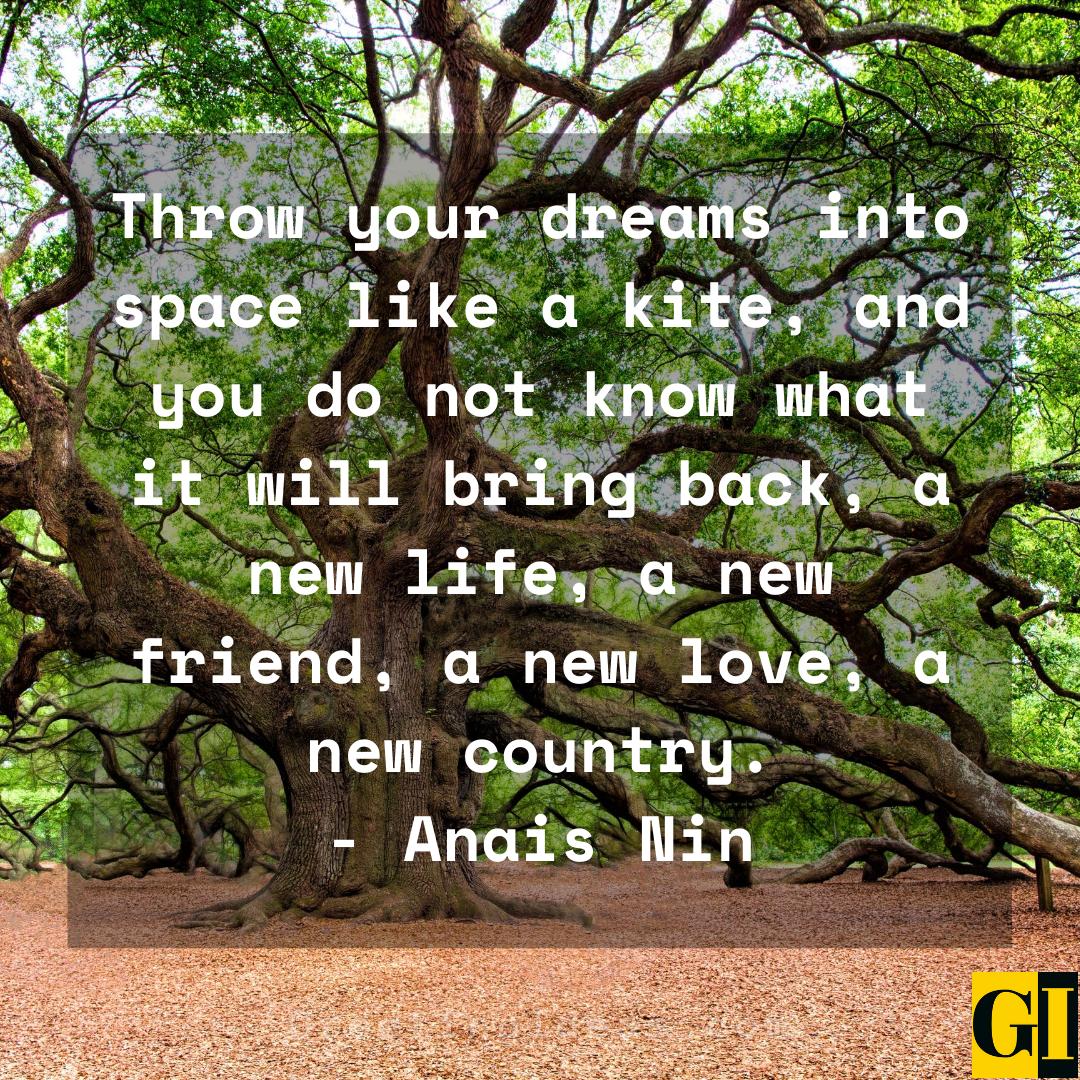 Dream Big Quotes Greeting Ideas 6
