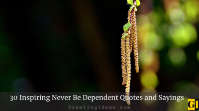 30 Inspiring Never Be Dependent Quotes and Sayings