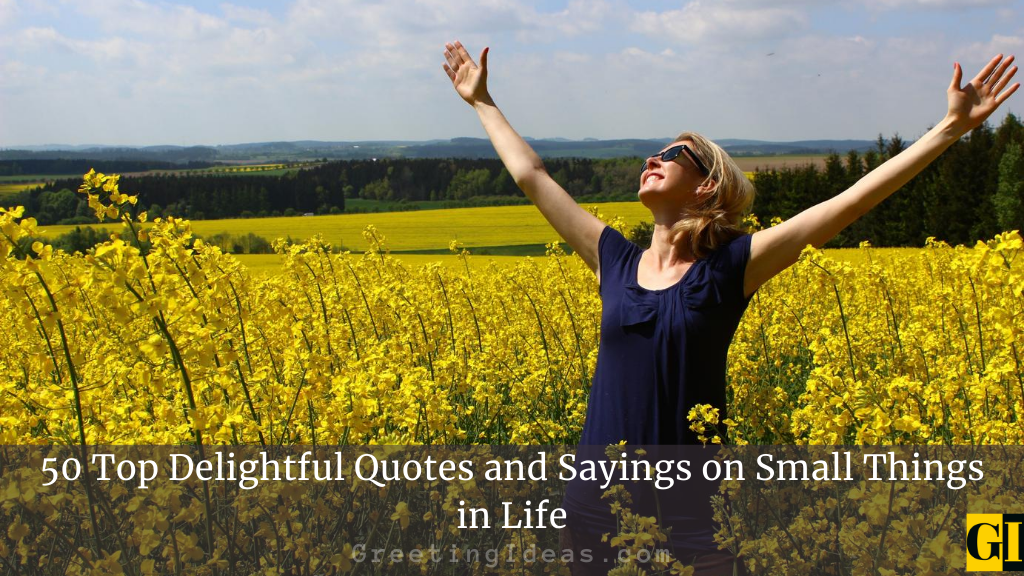 50 Top Delightful Quotes and Sayings on Small Things in Life