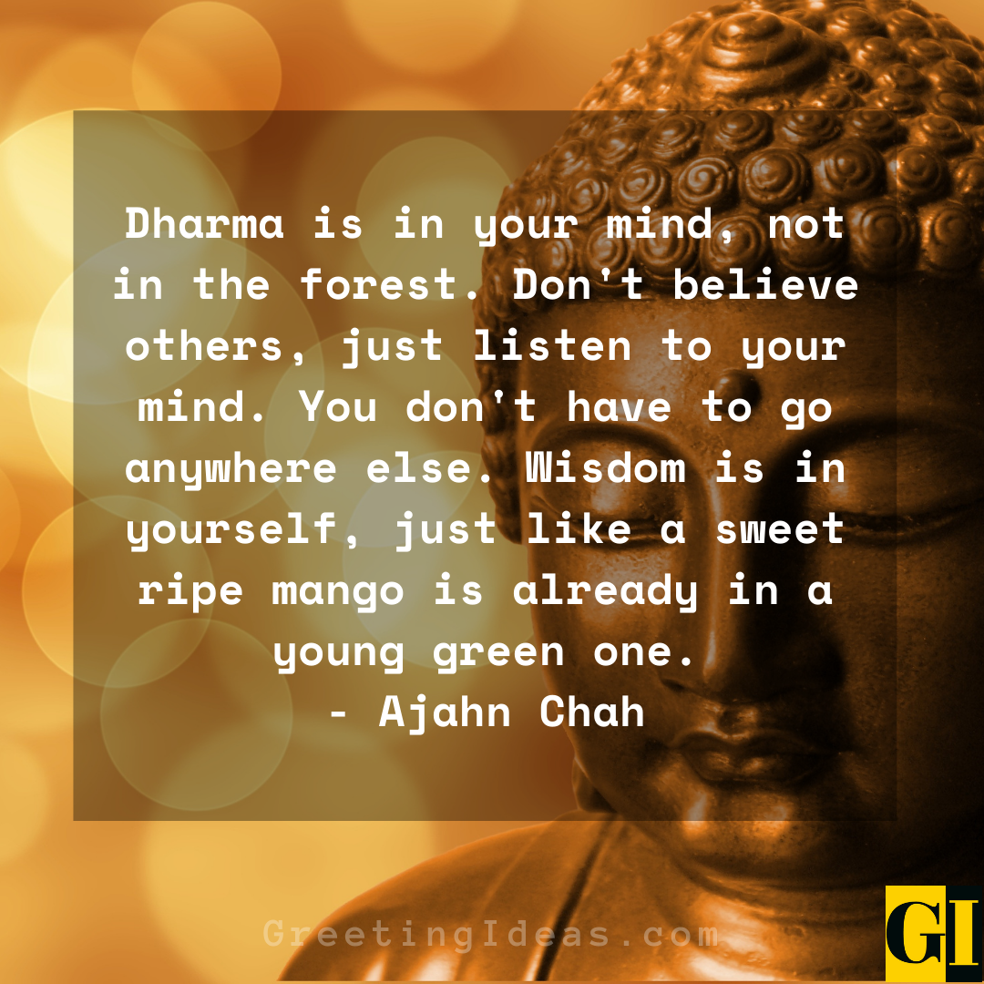 Dharma Quotes Greeting Ideas 6