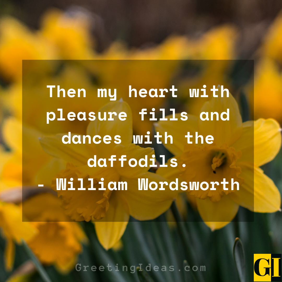 Daffodil Quotes Greeting Ideas 6
