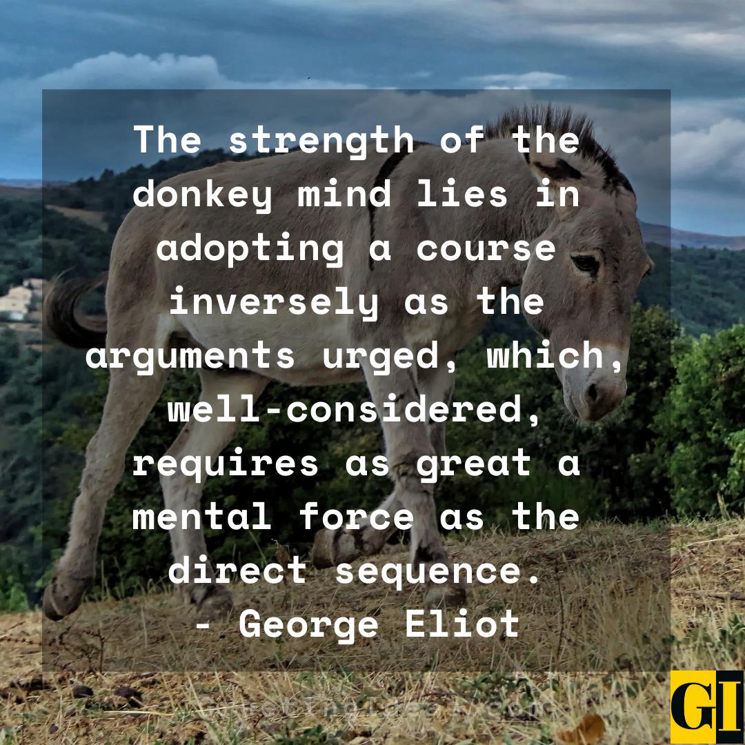Donkey Quotes Greeting Ideas 3