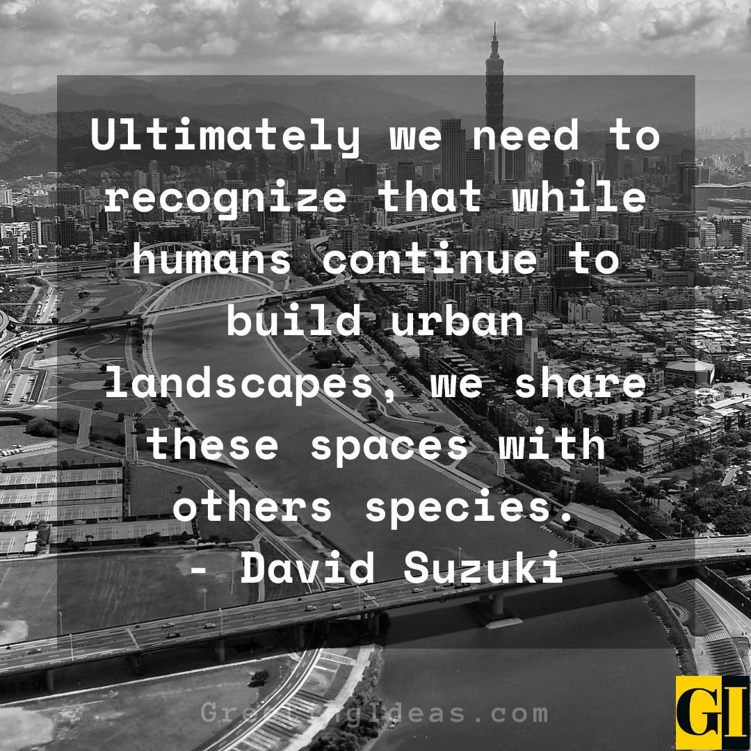 Urban Quotes Greeting Ideas 6