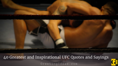 40 Greatest and Inspirational UFC Quotes and Sayings