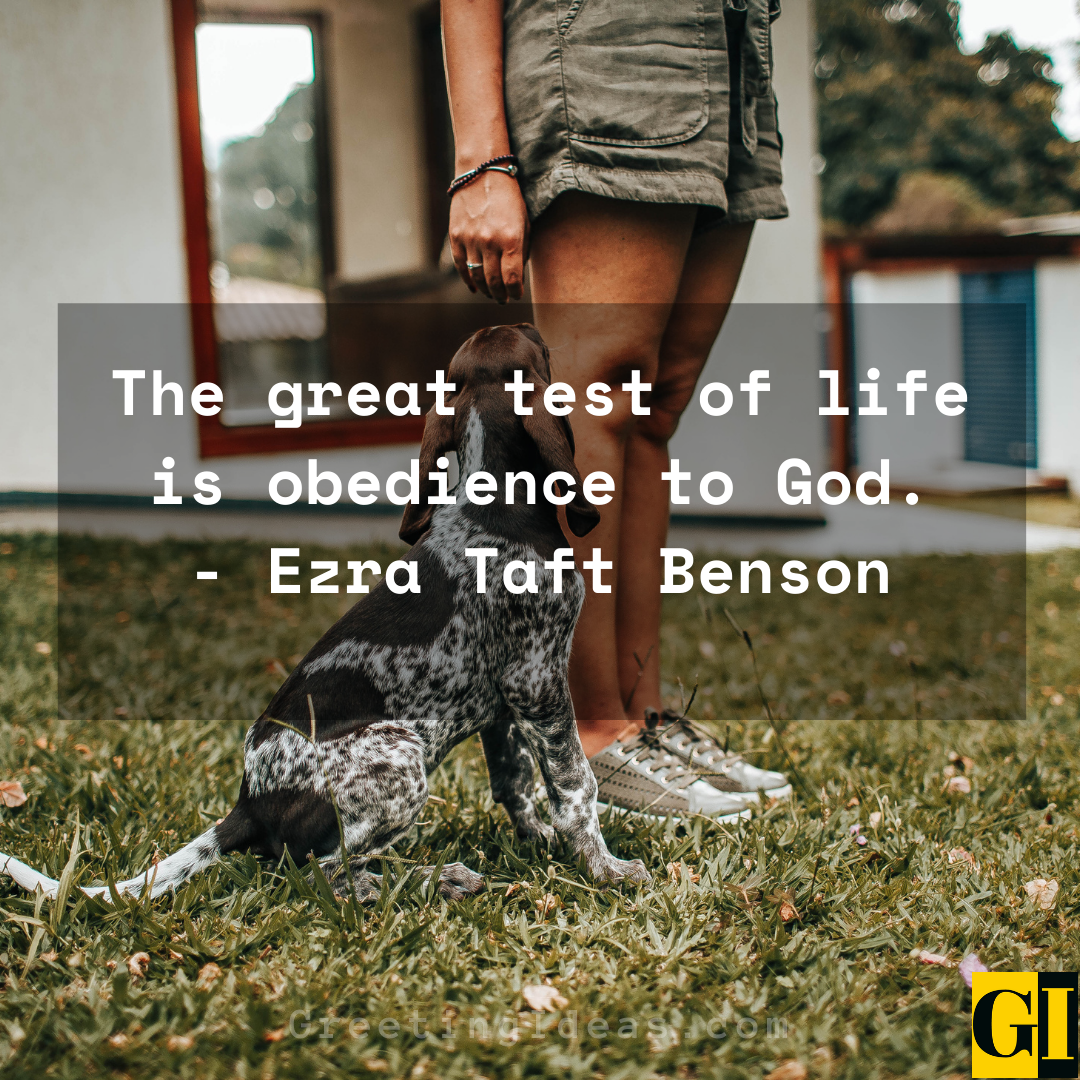 Obedience Quotes Greeting Ideas 2