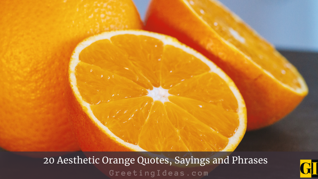 20 Aesthetic Orange Quotes Sayings and Phrases