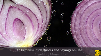 20 Famous Onion Quotes and Sayings on Life