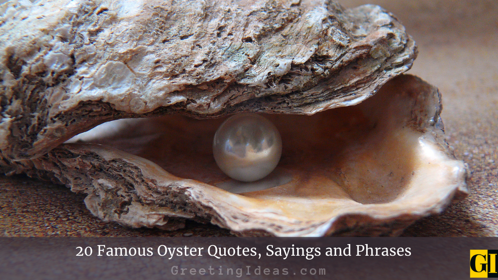 20 Famous Oyster Quotes Sayings and Phrases