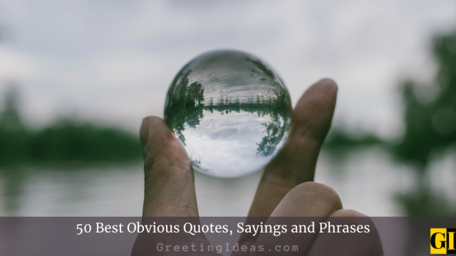 50 Best Obvious Quotes, Sayings and Phrases