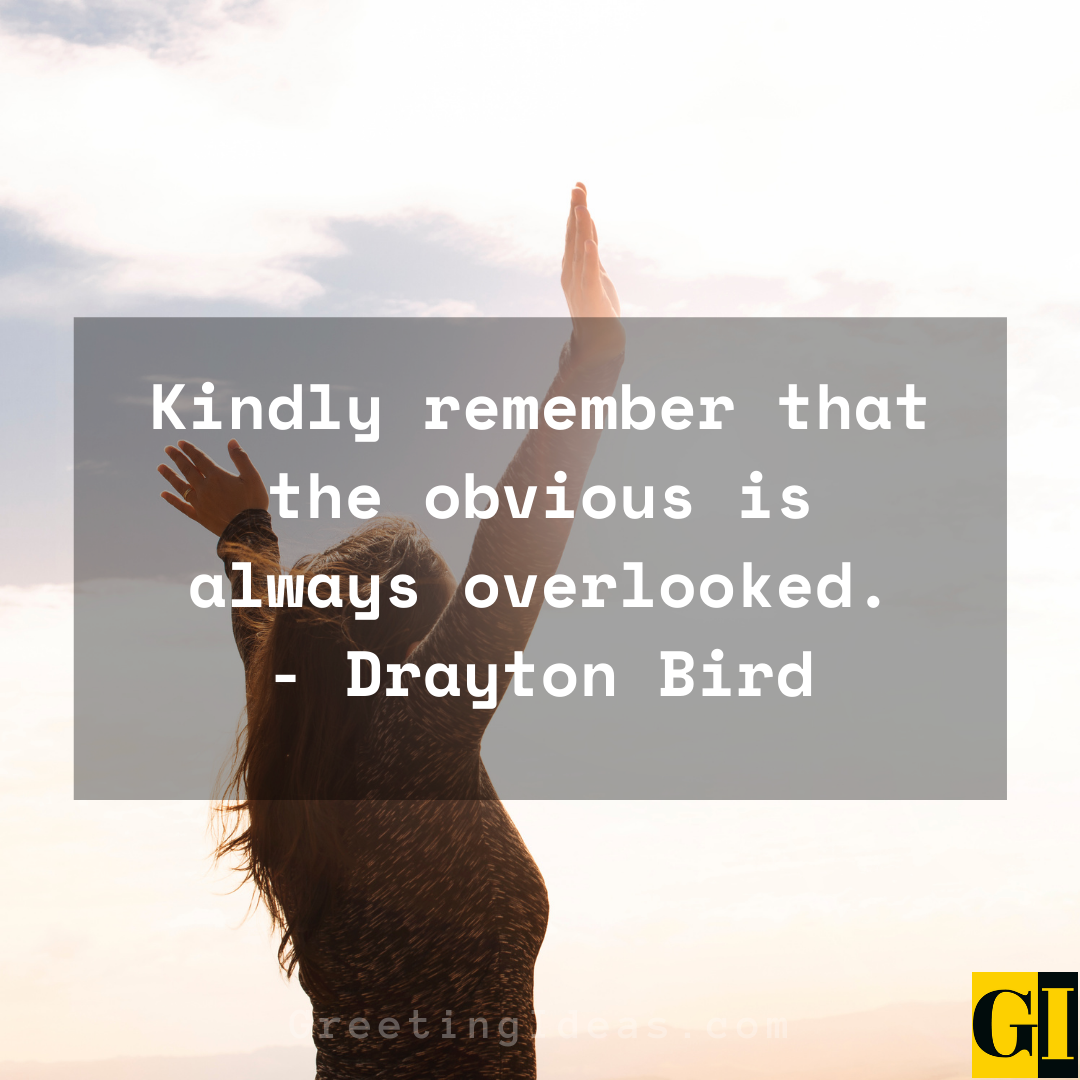 Obvious Quotes Greeting Ideas 5