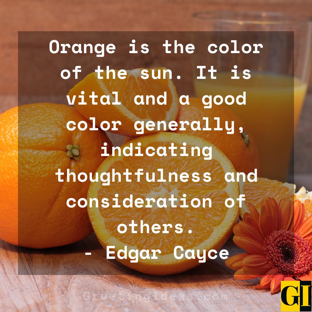 Orange Quotes Greeting Ideas 3