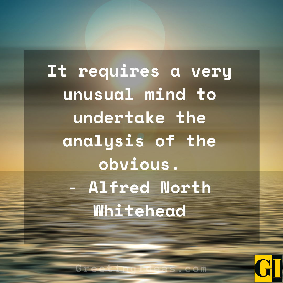 Outrageous Quotes Greeting Ideas 1