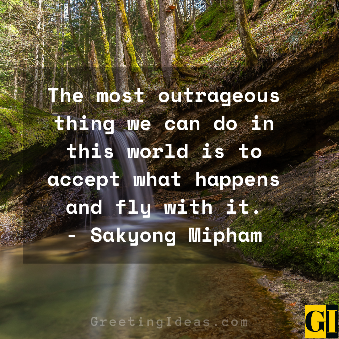 Outrageous Quotes Greeting Ideas 2